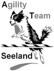 Hundeschule + Labrador-Zucht Seedorf, Aarberg, Schüpfen, Berner Seeland