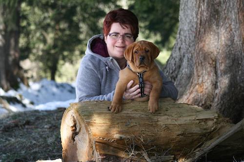Traumhund.jetzt_Hundeschule und Labrador Zucht Conny Seeland Seedorf Aarberg Schüpfen Lyss Bern Schweiz